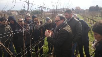 Paolo Pietromarchi e Giorgio Colatosti spiegano ai sommelier le basi della viticoltura