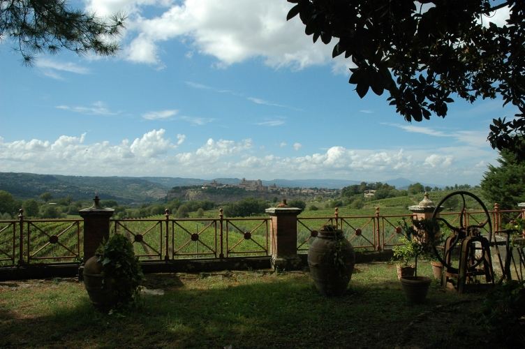 DEGUSTAZIONE – Tenuta Le Velette di Orvieto, dove il vino incontra la storia e il piacere